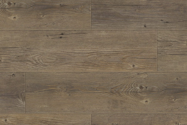 Buffalo / GERFLOR Creation 55 Clic 0457