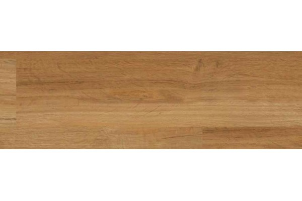 Garden Oak / Cavalio 0.3 7007